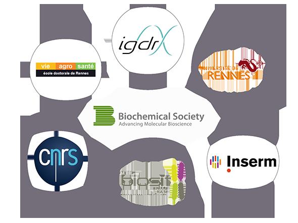 logos_symposiumYSL2014_590.png